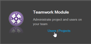 Select Users under Teamwork Module