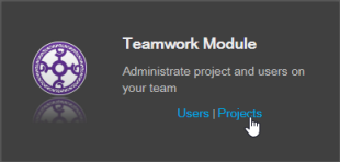 Select Projects under Teamwork Module