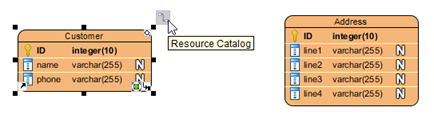 Drag out resource icon from Customer entity